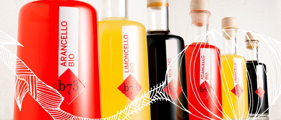 slide-liquori